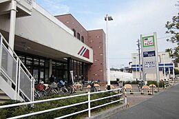 マルアイ本荘店…約560m