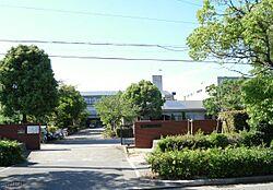 芦屋市立浜風小学校(345m)