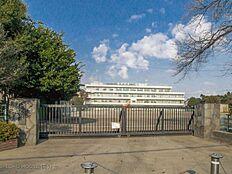 小金井市立東小学校 距離480m