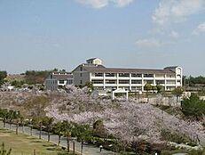 中学校三木東中学校まで1359m