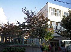 神戸市立本山第一小学校(605m)