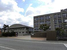 平岡南中学校…約910m