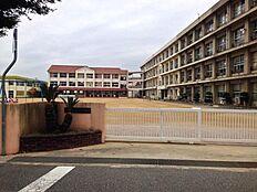 錦浦小学校 約1140m