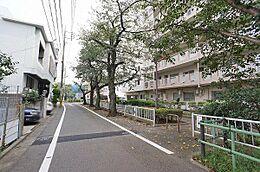 前面道路/前面道路を挟んだ向かい側は緑道のため開放的です
