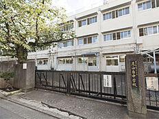 尾山台中学校