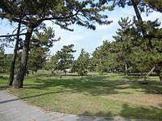 曽根松原公園 約1000m