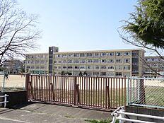 氷丘南小学校…約720m