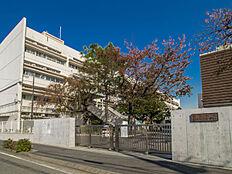 狛江市立狛江第二中学校 距離880m