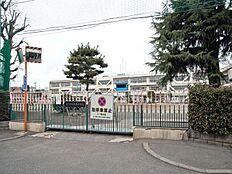 国立市立国立第五小学校 500m