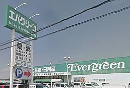 ショッピングセンターエバグリーン御坊店まで888m