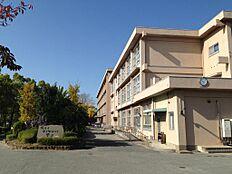 尾上小学校(約760m)