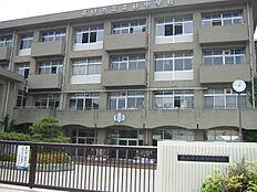 高砂中学校 約1280m