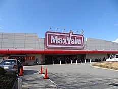 マックスバリュ石守店…約540m