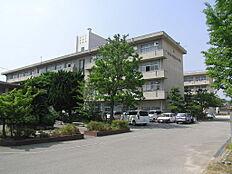 荒井中学校 約1390m