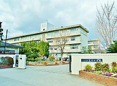 荒井中学校(約280m)