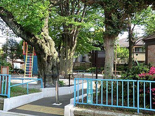 マンション(建物全部)-目黒区東が丘1丁目 周辺環境:柿の木坂児童遊園