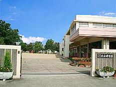 白浜幼稚園 1470m