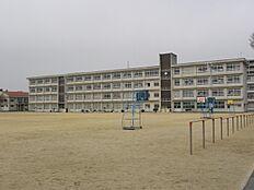 平岡北小学校…約660m