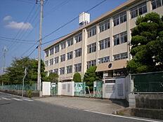 氷丘中学校(約700m)