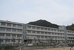 谷外小学校