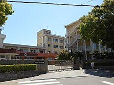 紀ノ川中学校