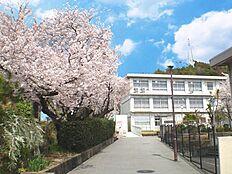 姫路市立花田中学校 約2400m