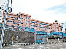 八王子市立長房小学校 距離600m