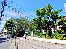 -立会川緑道-近隣の方の憩いの散歩コースなのがこの立会川緑道です。旗の台から西大井のほうまで伸びています。ジョギングやペットの散歩、ご近所の方同士の楽しげな立ち話の様子は和みます。