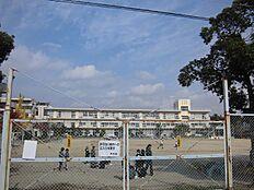 曽根小学校…約770m