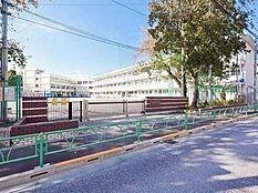 小学校世田谷区立 赤堤小学校まで1014m