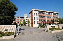 第四中学校1121m