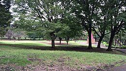 都立祖師谷公園(450m)9万平米を超える敷地には、人工芝テニスコート(4面)やゲートボール場(2面)等の施設と、桜の名所になっている場所もございます。