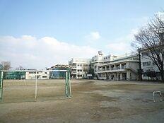 小学校西東京市立東小学校 まで750m