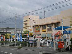 グルメシティ 今津店(1195m)