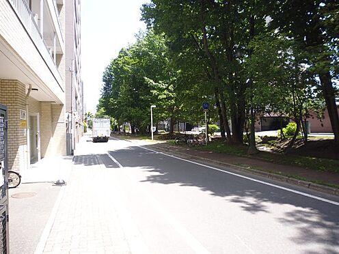 マンション(建物全部)-札幌市中央区北四条西17丁目 前面道路