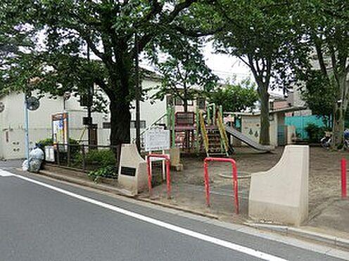 マンション(建物全部)-杉並区成田東4丁目 周辺環境:松ノ木北公園