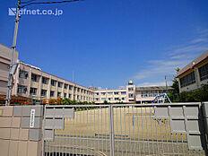 竹谷小学校  300m