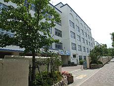 神戸市立本山中学校(498m)