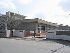 平岡東小学校…815m