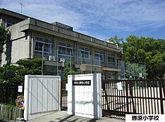 姫路市立勝原小学校 約810m
