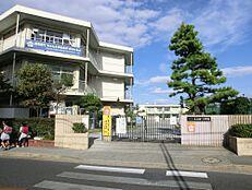小学校西東京市立保谷第一小学校まで600m