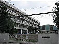小学校武蔵野市立 第一小学校まで894m