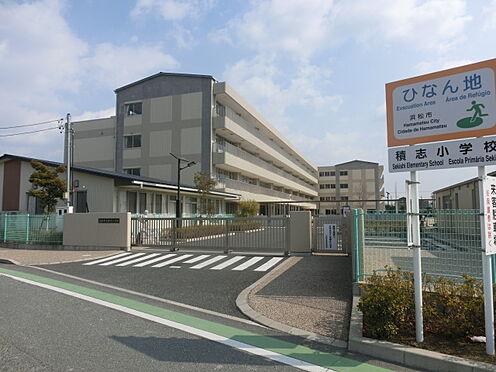 アパート-浜松市東区半田町 浜松市立積志小学校(1333m)