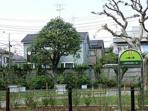 マンション(建物全部)-練馬区関町南4丁目 周辺環境:北裏公園