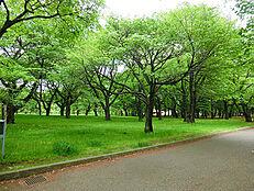 小金井公園 (約820M)