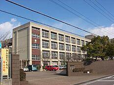 陵南中学校…約390m