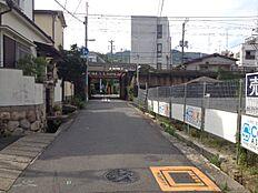 西側・前面道路(南側より撮影)