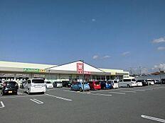 松源西庄店