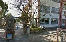 小学校小倉小学校まで911m