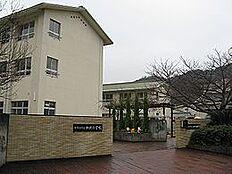 小学校加太小学校まで1269m